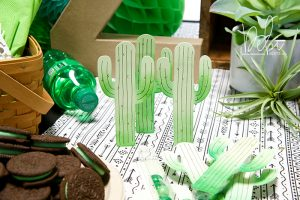 Creative DIY Party Decor Series   Unique and Trendy Cactus Baby Shower by Debi Adams for Spellbinders