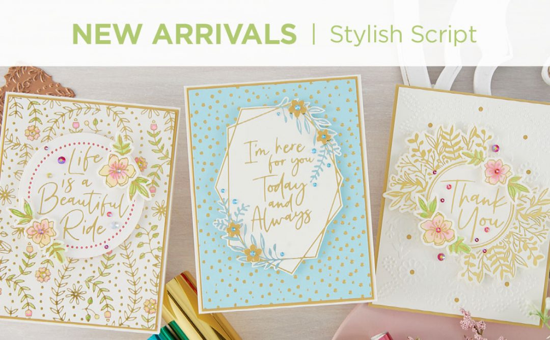 What's New | Stylish Script Collection